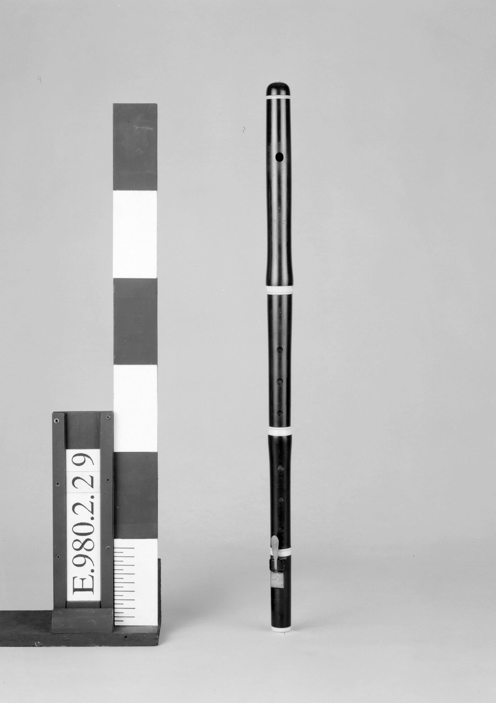Flûte traversière | Guillaume Triebert
