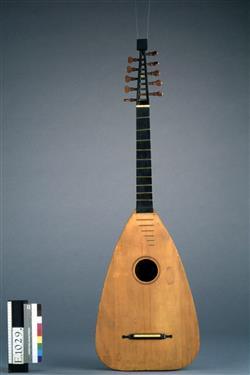 Luth-guitare | Giorgio Seelos