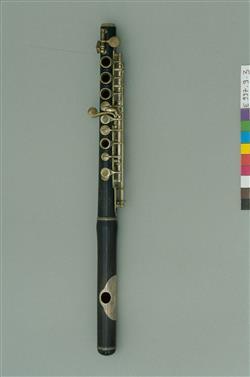 Flûte traversière piccolo en ré bémol | Auguste Bonneville